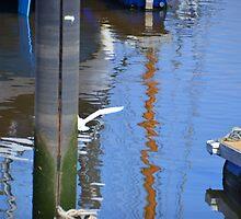 Egret Fishing Blooper.......... by lynn carter
