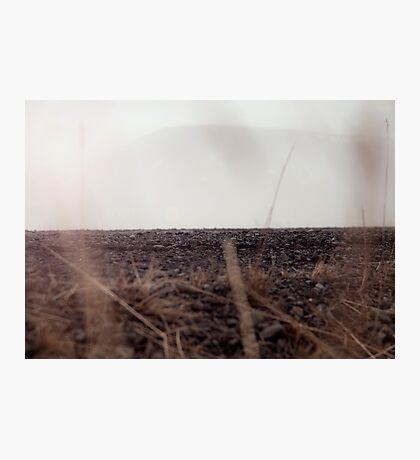 Hiding Ground Photographic Print