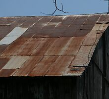 Rusted Roof by D.M. Mucha