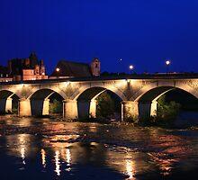 Bridge over Loire by cedriccochez