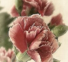 Red-Pink Carnations 1 Rustic by Christopher Johnson