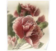 Red-Pink Carnations 1 Rustic Poster