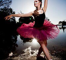 swan by corex