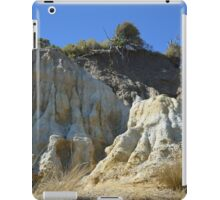 NATURAL SCULPTURE iPad Case/Skin