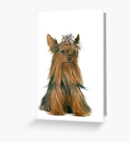 Bailey Greeting Card