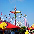 A Day at the Fair by Barbara Gordon