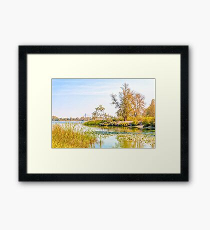 Trees Close to the River Framed Print