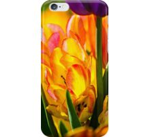 Tulips Enchanting 04 iPhone Case/Skin
