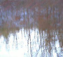 Hidden Reflection by jason kale