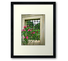St. Louis Botanical Garden Framed Print