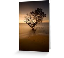 the contemporary tree Greeting Card