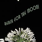 Reach for the Moon by TLCGraphics