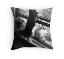Here I`ll Pass You The Key Throw Pillow