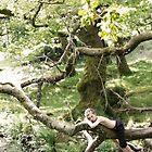 treelax by John Slater