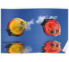 Tropical fishes Poster