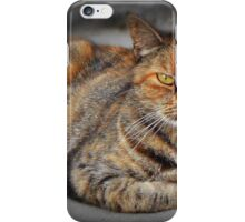 Rest in the last rays of the sun iPhone Case/Skin