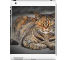 Rest in the last rays of the sun iPad Case/Skin