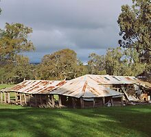 wartook woolshed by Andrew Cowell