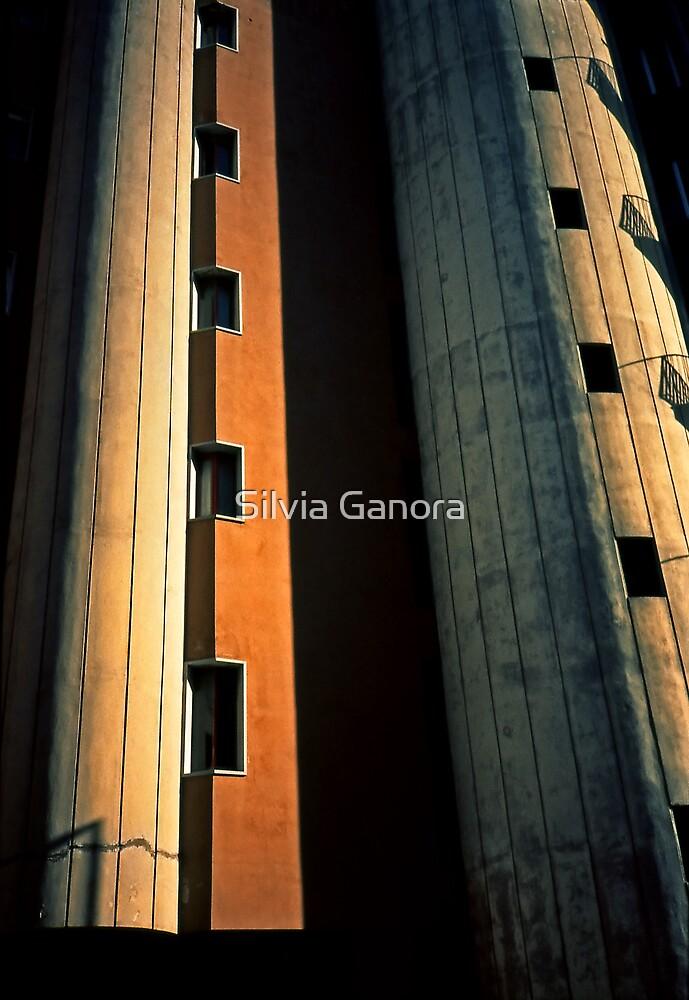 Metropolis by Silvia Ganora