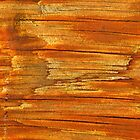 Wood Tones by CynLynn