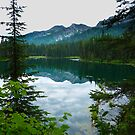 ISLAND LAKE - BRITISH COLUMBIA by kotybear
