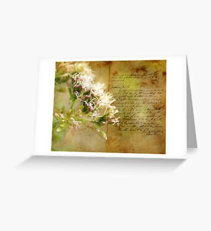 the book of life Greeting Card
