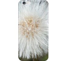 What Time Is It - Dandelion iPhone Case/Skin