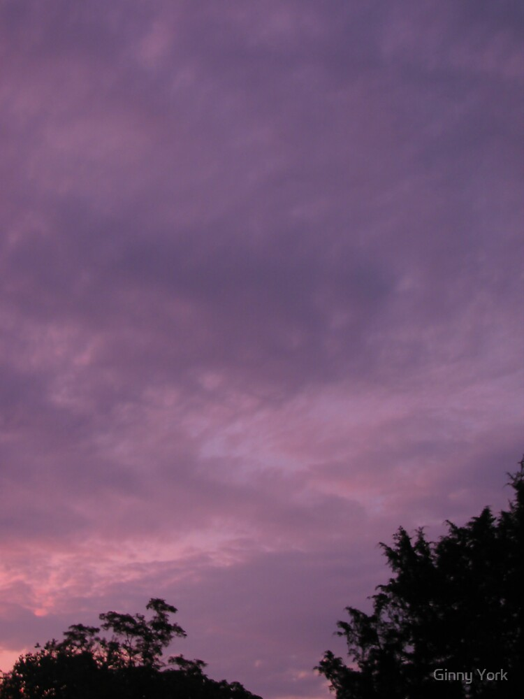 Purple Skies by Ginny York