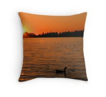 An Evening Swim Throw Pillow