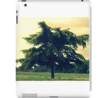 A fir tree iPad Case/Skin