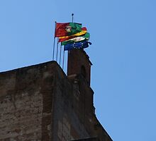 Flags by CiaoBella