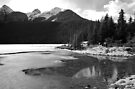 Lake Louise in Spring -  Alberta, Canada by Barbara Burkhardt