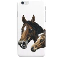 mare and foal painting iPhone Case/Skin