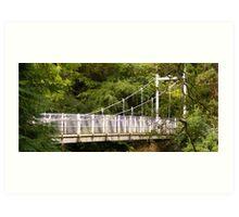 Ness Islands Bridge Art Print