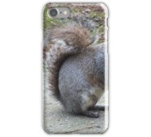 Who Ate All The Nuts?  iPhone Case/Skin