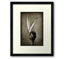 The last two Framed Print