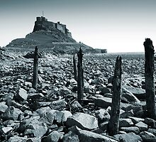 Lindisfarne Castle, Holy Island by Ritchie Coatsworth