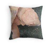 Pancake! Throw Pillow