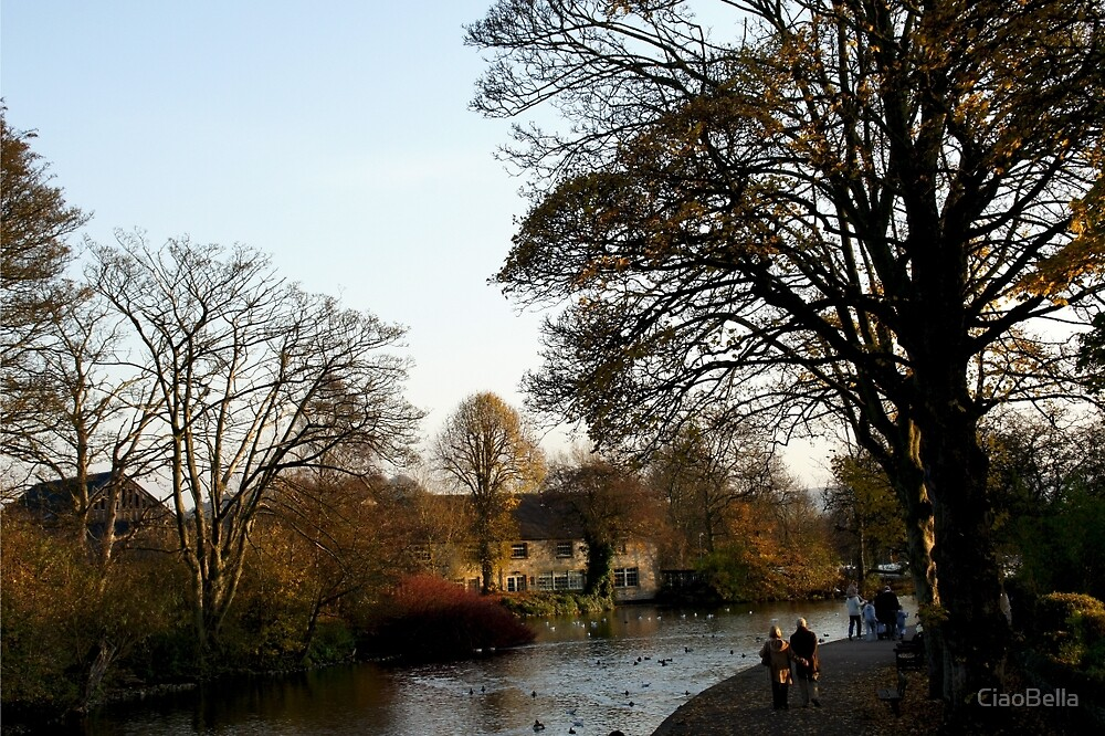 An English Autumn Afternoon Stroll by CiaoBella