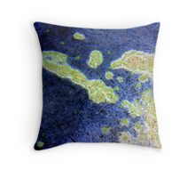 Reef... abstract Throw Pillow