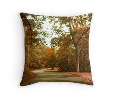 Autumn Drive Through The Park Throw Pillow