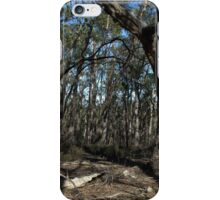 Desolation on the Pengana Spur Track iPhone Case/Skin
