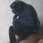 The Thinker... Monkey Style. by heathernicole00