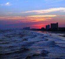 Shoreline Sunset by Ree  Reid