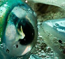 Squid Eye Macro by AllshotsImaging