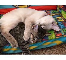 snuggle Photographic Print