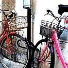 Bikes in Love by Lucas Himovitz