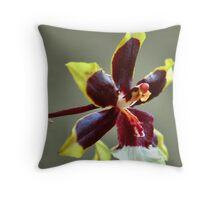 orchid species - ONCIDIUM Throw Pillow