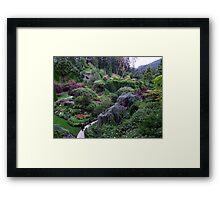 Sunken Garden No.2 Framed Print