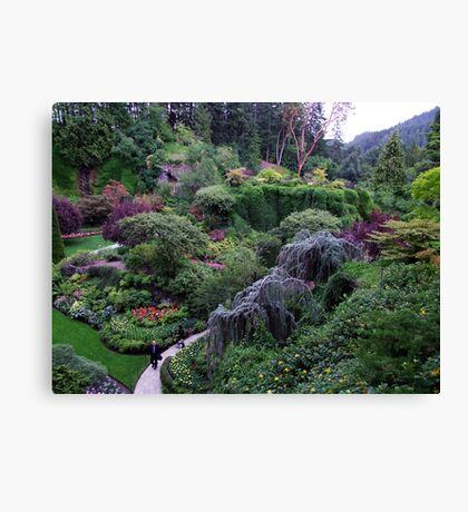 Sunken Garden No.2 Canvas Print